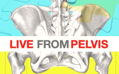 Live from pelvis (13-14 mars 2021)